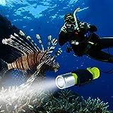 BlueFire ダイビングライト Cree XM-L2 1100LM IPX8防水 水中懐中電灯 LEDライト ダイビング懐中電灯 潜水 ハンドストラップ付単4電池 18650対応