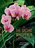 img - for The Orchid Whisperer: Expert Secrets for Growing Beautiful Orchids book / textbook / text book