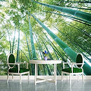 Bamboo forest wallpaper mural for Amazon mural wallpaper