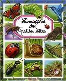 echange, troc Emilie Beaumont, Bernard Alunni, Marie-Christine Lemayeur - L'imagerie des petites bêtes
