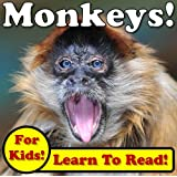 Monkeys! Learning About Monkeys - Monkey Photos And Facts Make It Fun! (Over 45+ Pictures of Different Monkeys) (English Edition)