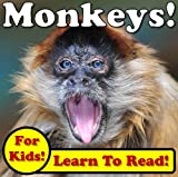 Monkeys! Learning About Monkeys - Monkey Photos And Facts Make It Fun! (Over 45+ Pictures of Different Monkeys)