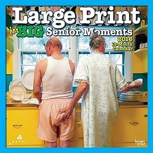 Large Print for Big Senior Moments 2016 Wall Calendar