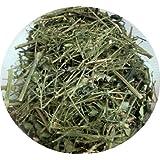 "Kalmegh - Kariyat - Fah-talai-jone (Andrographis paniculata) - Kraut / ganze Pflanze - 100 GR (Aromaschutzbeutel)von ""psoriasisEX �"""