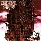 Gallery Of Suicide [VINYL]