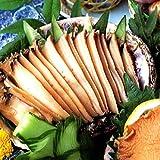 山梨 あわび 煮貝【訳あり】グルメわけあり激安高級食品あわびの煮貝も小さくてふぞろいなら訳あり激安3個入り