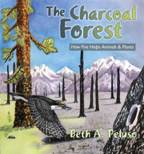 The Charcoal Forest: How Fire Helps Animals & Plants