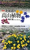 北海道の高山植物
