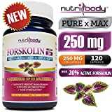 nutribody Pure Forskolin Coleus Forskohlii Root Extract - 120 Count 250 mg PER Capsule, 120 Days Supply, with Standardized 20% Active Forskolin, Maximum Strength Natural Weight Loss Supplement, Belly Fat Burner. 100% Money Back Guarantee! No Risk - Lose Weight or Your Money Back!