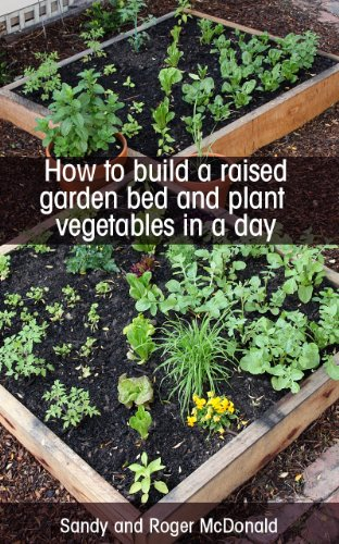 How To Build A Raised Garden Bed And Plant Vegetables In A Day