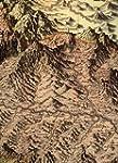 Les Grandes Alpes dans la cartographi...