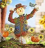 Fall Scarecrow Garden Stake Set Decoration