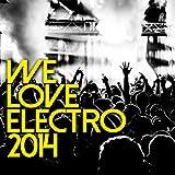 We Love Electro 2014