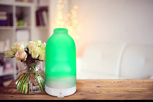 Botella Essential Oil Diffuser by Deneve