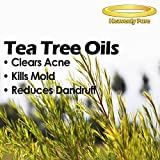 Heavenly Pure Natural Therapeutic Grade Tea Tree Essential Oil. 4-Ounce