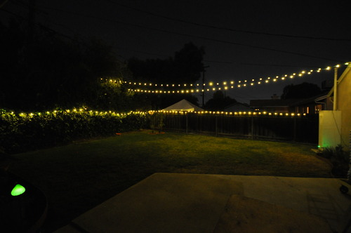 Amazon.com : Philips Clear Globe LED String Lights Set of 25 G40 Bulbs Indoor / Outdoor : Patio ...