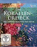 DVD Cover 'Das Korallendreieck - Das größte Geheimnis der Natur [Blu-ray]