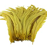 Sowder Yellow Rooster Coque Tail Feathers 13-16inch Lengh Pack of 50 (Color: Yellow)