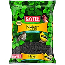 Kaytee Nyjer Thistle Seed for Pets, 3-Pound
