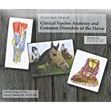 Illustrated Atlas of Clinical Equine Anatomy & Common Disorders of the Horse
