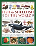 img - for The Illustrated Encyclopedia of Fish & Shellfish of the World: A natural history identification guide to the diverse animal life of deep oceans, open ... with 1700 illustrations, maps and photographs book / textbook / text book