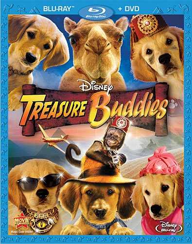 Treasure Buddies (Two-Disc Blu-ray/DVD Combo)