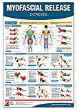 Myofascial Release Chart/Poster