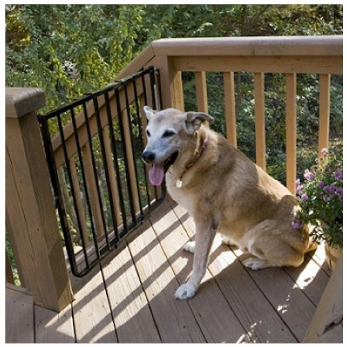 Cardinal Stairway Special Outdoor Pet Gate - Black Ss-30Od/B