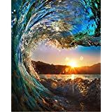 BOSHUN Paint by Numbers Kits with Brushes and Acrylic Pigment DIY Canvas Painting for Adults Beginner- Sunset Seascape 16 x 20 inch(Without Frame) (Color: Sunset Seascape, Tamaño: Frameless)