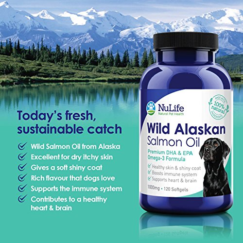 Premium wild alaskan salmon oil for dogs omega 3 fish for Fish oil for dog allergies