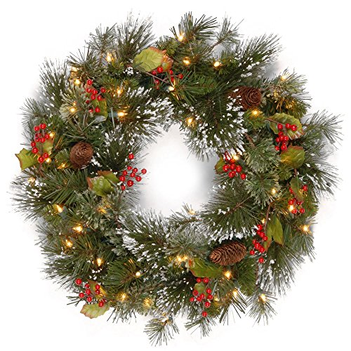 National Tree Wp1-300Lv-24W-B Wintry Pine Wreath With Cones, 24-Inch
