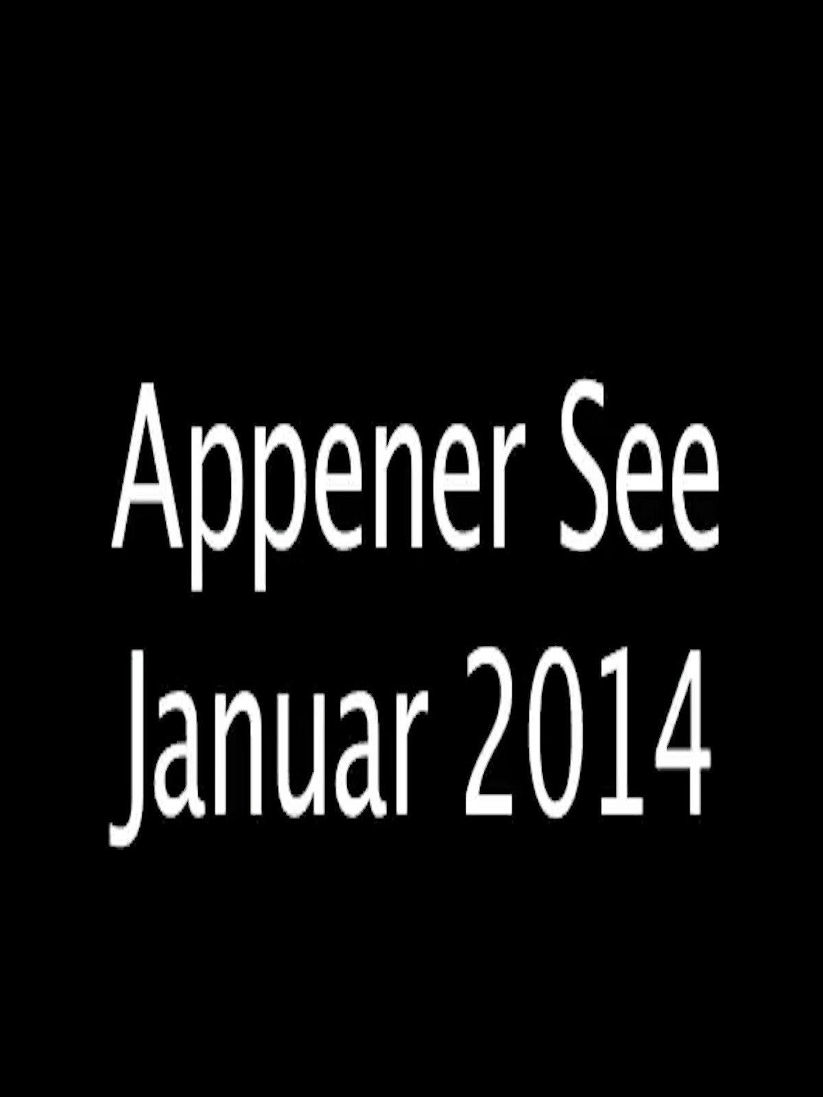 Appener See Januar 2014