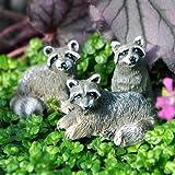 Miniature Fairy Garden Tiny Raccoons, Set of 3