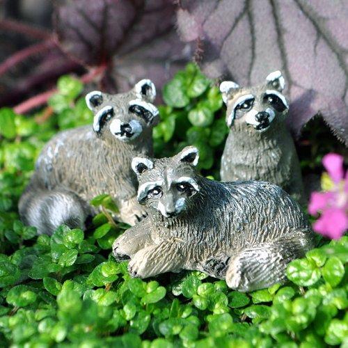 Miniature Fairy Garden Tiny Raccoons, Set of 3 bp 3 home garden