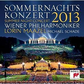 Sommernachtskonzert 2013 / Summer Night Concert 2013