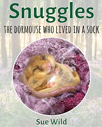 snuggles-the-dormouse-who-lived-in-a-sock-uk-wildlife-mammals-book-1