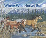 img - for Where Wild Horses Run book / textbook / text book