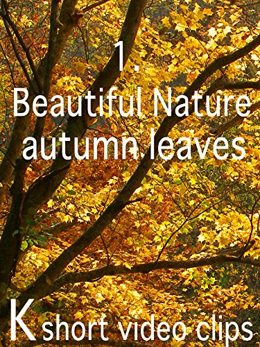 Clip: 1.Beautiful Nature-autumn leaves