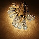 Mesh Lantern Ball LED Christmas String Lights w Power Adapter - Warm White - 29ft Length - 40pcs Balls for Christmas - Holiday - Party - Event Decorative Lighting (Mesh Lantern Ball W Power Adapter)