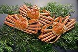 【新潟のカニ屋】 紅ずわい蟹(カニ) 姿 3~4ハイ [総量 2kg] 日本海産茹でたてセット ランキングお取り寄せ