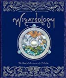 Wizardology: The Book of the Secrets of Merlin