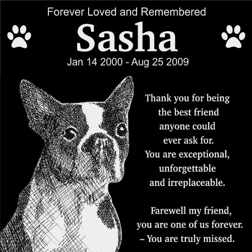 personalized boston terrier pet memorial 12 x12 engraved black