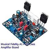 Generic Musical Fidelity A1 Pure Class Amplifier Board 20W AMP Board ( Music Fax )