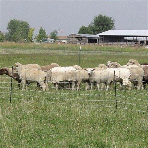 Powerfields P-75-G Sheep Net, 33-Inch 165-Feet, Green