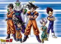 Dragon Ball Z: Warriors of Z Wall Scroll