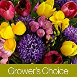 Grower's Choice Assorted Bouquet - Flowers