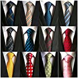 Weishang Lot 12 PCS Classic Men's 100% Silk Tie Necktie Woven JACQUARD Neck Ties (Style 2)