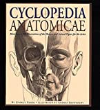 img - for Cyclopedia Anatomicae: More Than 1,500 Illustrations of the Human and Animal Figure for the Artist by Feh r, Gyorgy (1996) Hardcover book / textbook / text book