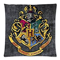 Harry Potter Hogwarts School Sign Gryffindor Ravenclaw Hufflepuff Slytherin Custom Pillowcase Pillow Sham Throw Pillow Cushion Case Cover Two Sides Printed 18x18 Inches