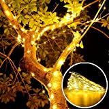Loende Battery Operated Indoor Starry String Lights, Waterproof Copper Wire Fairy String Lights, Perfect for Home Bedroom Patio Lawn Garden (50 LED 18Ft, Warm White, With Remote & Timer, 3AA Battery Not Included)